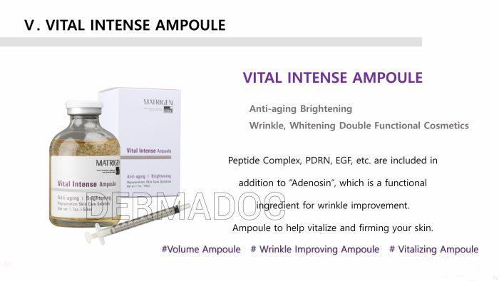 Matrigen Vital Intense Ampoule 50ml Korea best Hyaluronic Acid serum