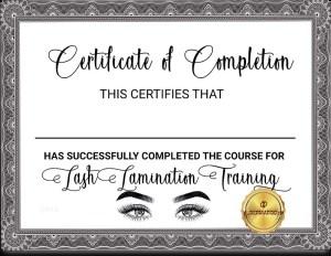 Lash Extension Certification -online Lash Certification