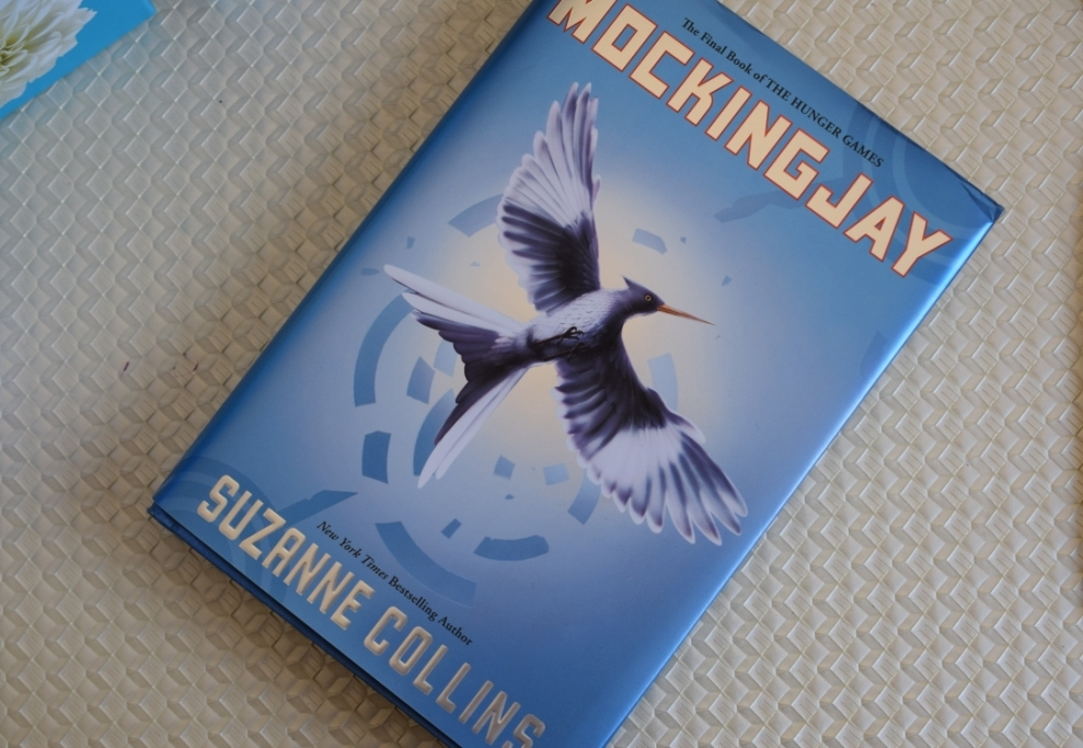 20140407 bleu 8 Mockingjay book