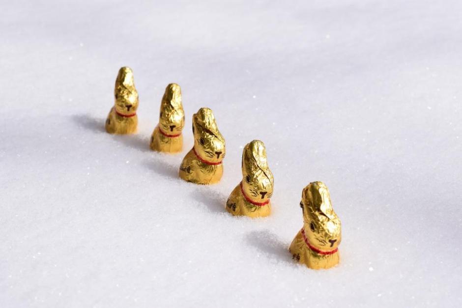 Joyeuses Pâques lapins