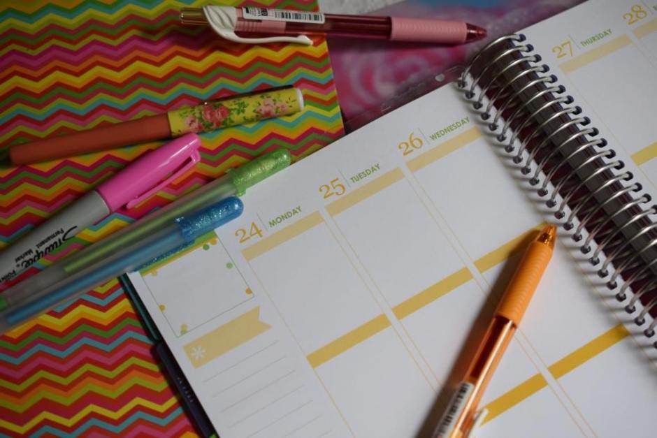 Life planner Erin Condren 1