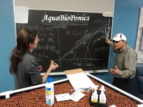 Workshop sobre AquaBioPonics Dado Recentemente pelo Prof Aecio D'Silva na Davis Magnetic School, Tucson, Arizona, USA.