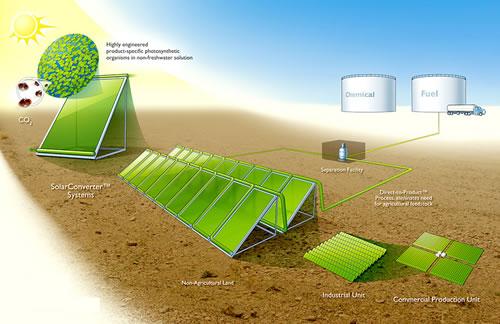 Conversão Direta da Energia Solar (convertedores solares), CO2 e água em Combustíveis Renováveis, Utilizando Micro-Organismos.