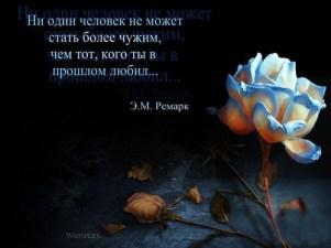 Profound (3)
