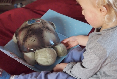Tartaruga della Cloud B