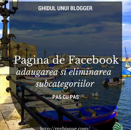 Pagina de Facebook si subcategoriile
