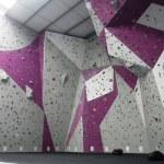 Boardroom - Main Lead Wall