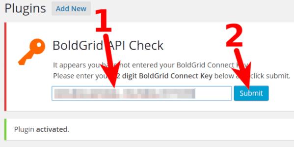 activating Boldgrid with API key