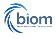 BIOM_InPixio