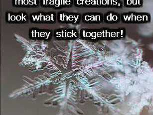 Snowflake Quotes and Poems