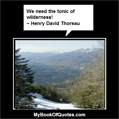 We need the tonic of wilderness