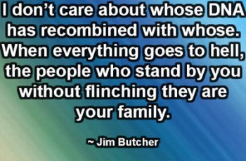 I don't care about whose DNA has recombined with whose. When everything goes to hell, the people who stand by you without flinching they are your family. ~ Jim Butcher