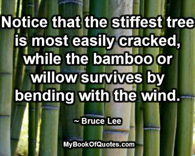 Notice that the stiffest tree is most easily cracked, while the bamboo or willow survives by bending with the wind. ~ Bruce Lee