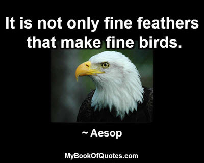 It is not only fine feathers that make fine birds. ~ Aesop