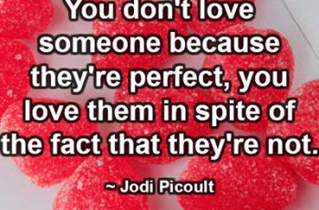 You don't love someone because they're perfect, you love them in spite of the fact that they're not. ~ Jodi Picoult
