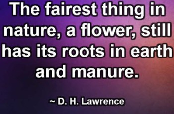 The fairest thing in nature, a flower, still has its roots in earth and manure. ~ D. H. Lawrence