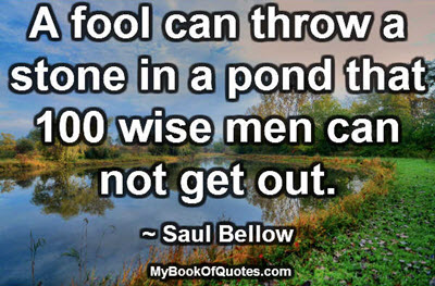 A fool can throw a stone in a pond that 100 wise men can not get out. ~ Saul Bellow
