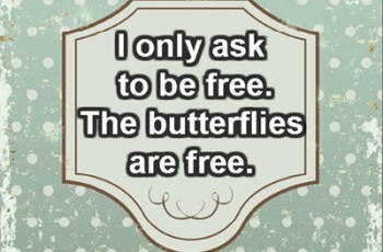 I only ask to be free. The butterflies are free. ~ Charles Dickens