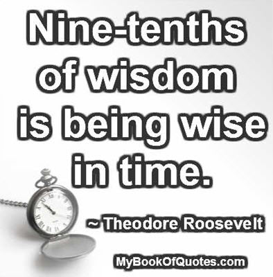 Nine-tenths of wisdom is being wise in time. ~ Theodore Roosevelt