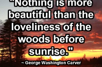 """Nothing is more beautiful than the loveliness of the woods before sunrise."" ~ George Washington Carver"