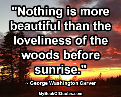 """""""Nothing is more beautiful than the loveliness of the woods before sunrise."""" ~ George Washington Carver"""