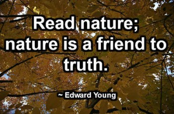 Read nature; nature is a friend to truth. ~ Edward Young