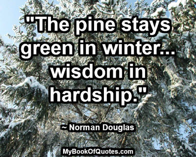 """The pine stays green in winter... wisdom in hardship."" ~ Norman Douglas"