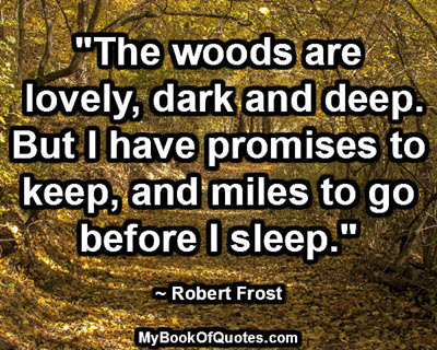 """""""The woods are lovely, dark and deep. But I have promises to keep, and miles to go before I sleep."""" ~ Robert Frost"""