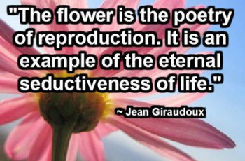 """The flower is the poetry of reproduction. It is an example of the eternal seductiveness of life."" ~ Jean Giraudoux"