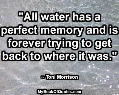 """""""All water has a perfect memory and is forever trying to get back to where it was."""" ~ Toni Morrison"""