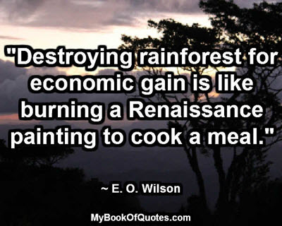 """""""Destroying rainforest for economic gain is like burning a Renaissance painting to cook a meal."""" ~ E. O. Wilson"""