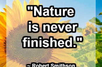 """""""Nature is never finished."""" ~ Robert Smithson"""