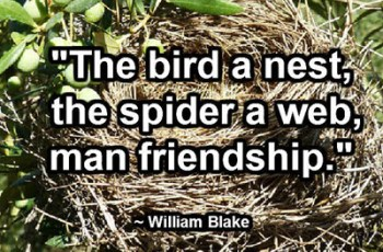 """The bird a nest, the spider a web, man friendship."" ~ William Blake"