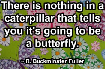There is nothing in a caterpillar