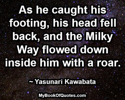 As he caught his footing, his head fell back, and the Milky Way flowed down inside him with a roar. ~ Yasunari Kawabata
