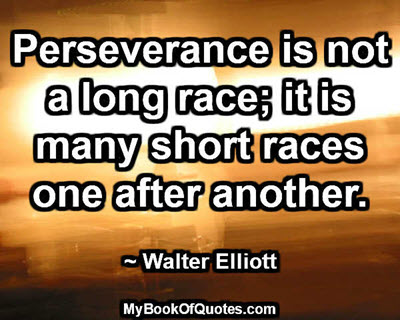 perseverance_is_not_a_long_race
