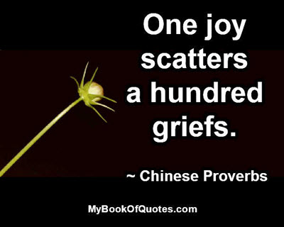 One joy scatters a hundred griefs. ~ Chinese Proverbs