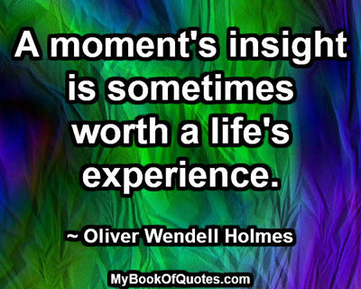 A moment's insight is sometimes worth a life's experience. ~ Oliver Wendell Holmes