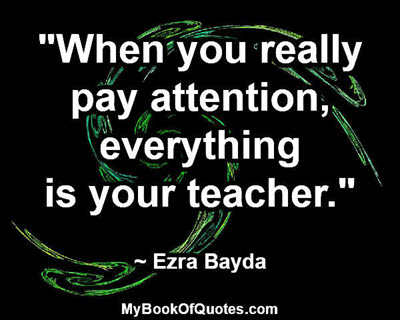 """""""When you really pay attention, everything is your teacher."""" ~ Ezra Bayda"""