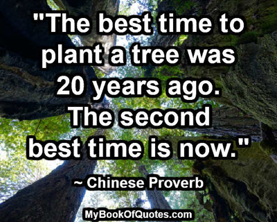"""""""The best time to plant a tree was 20 years ago. The second best time is now."""" ~ Chinese Proverb"""