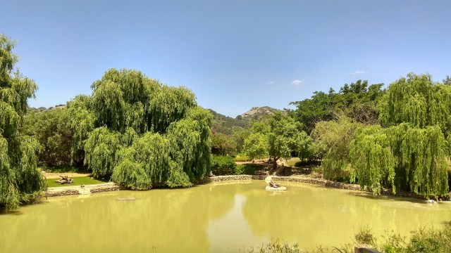 Ridgeback Wines: A Midweek Outing In The Paarl  Countryside
