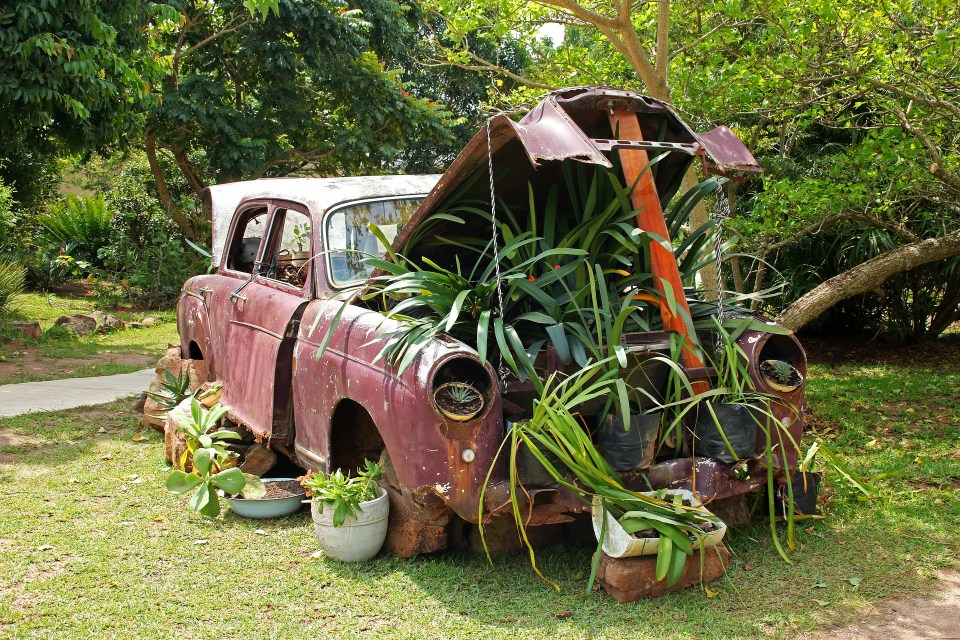 vintage car used as a boozy container garden
