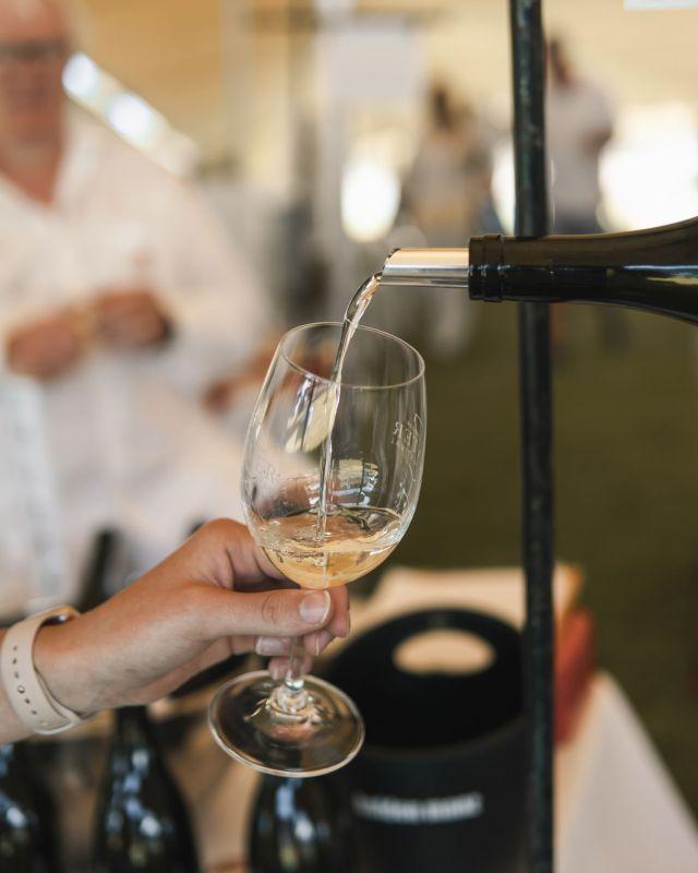 PR NEWS: Happy International Chardonnay Day From Franschhoek Valley