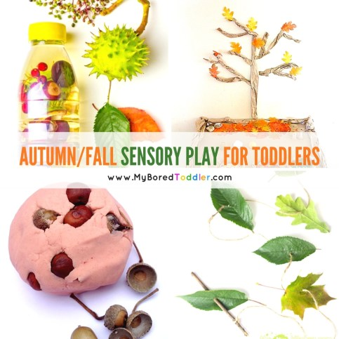 autumn and fall sensory play for toddlers instagram