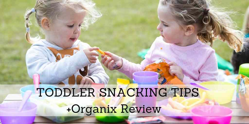 Toddler Snack Tips