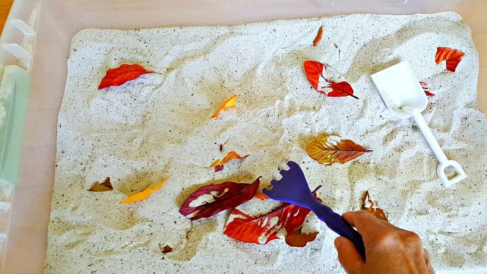Raking leaves into a pile in the sandbox