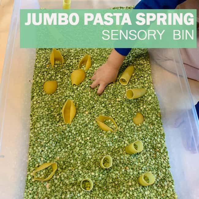 Jumbo Pasta Spring Sensory Bin for Toddlers