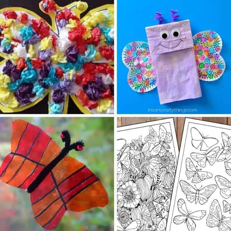 activities with butterflies