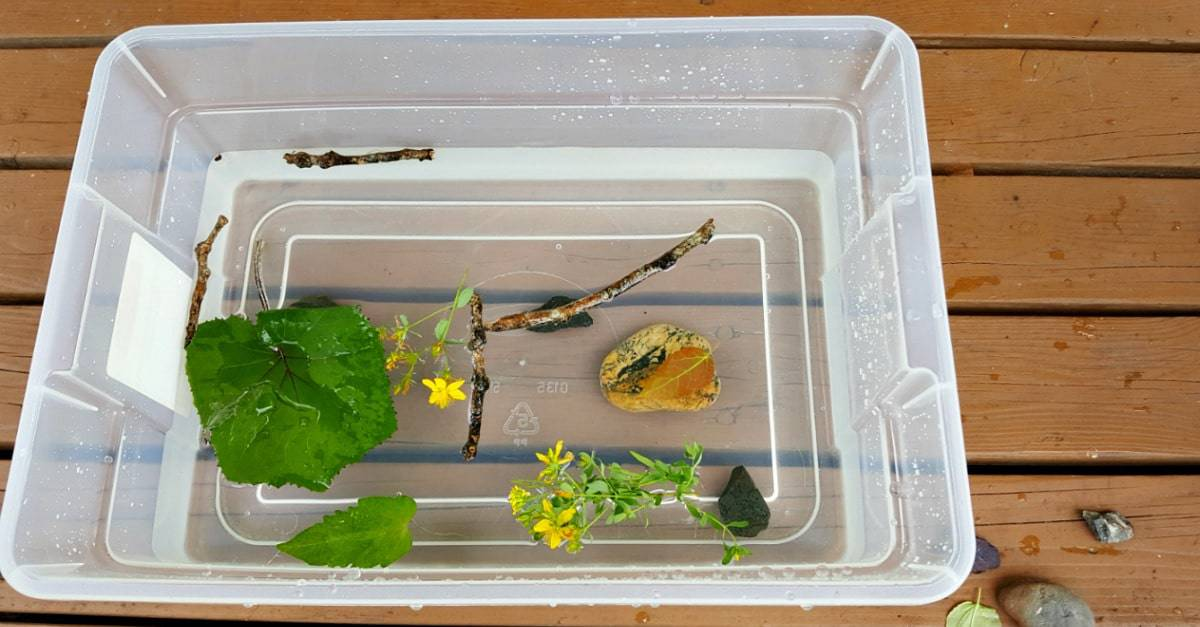 Nature theme water play for toddlers
