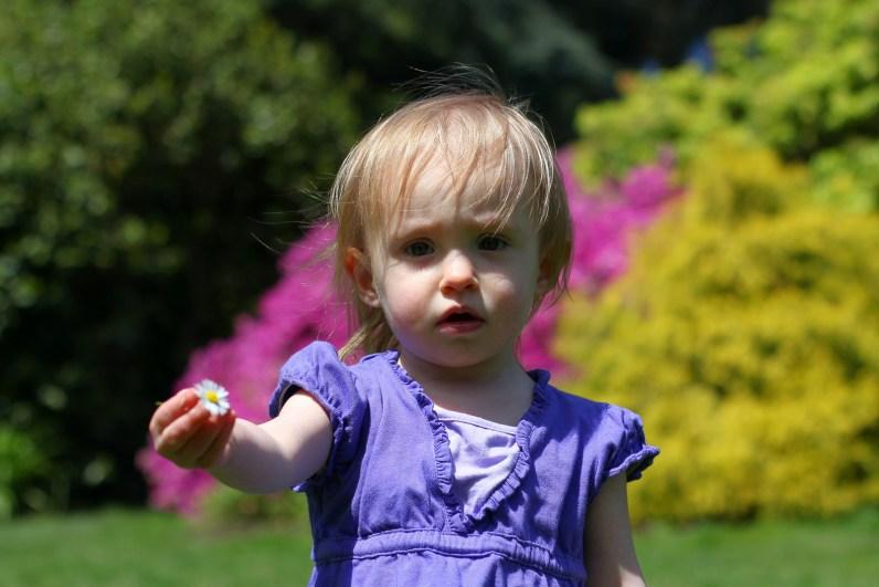 cute little girl holding tiny flower